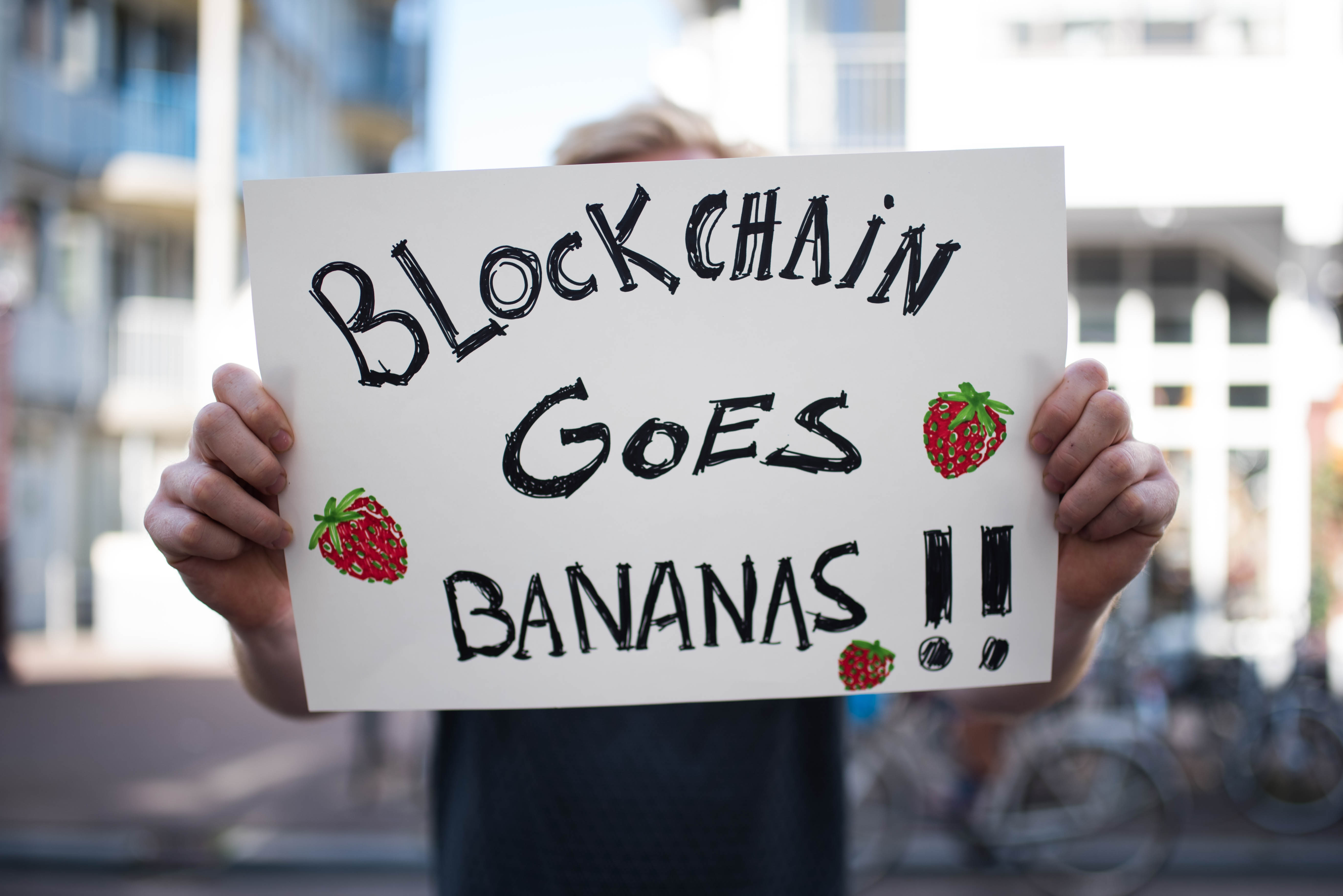 DSI protest sign blockchain