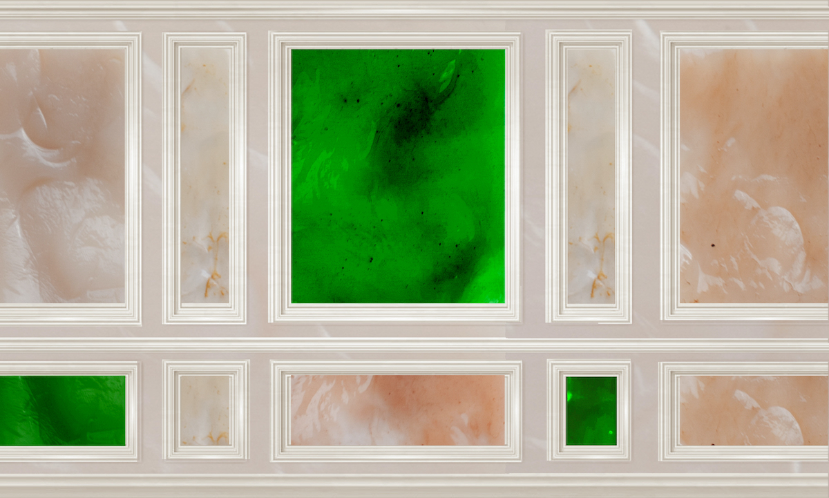 Wall paneling with algae, Studio Samira Boon