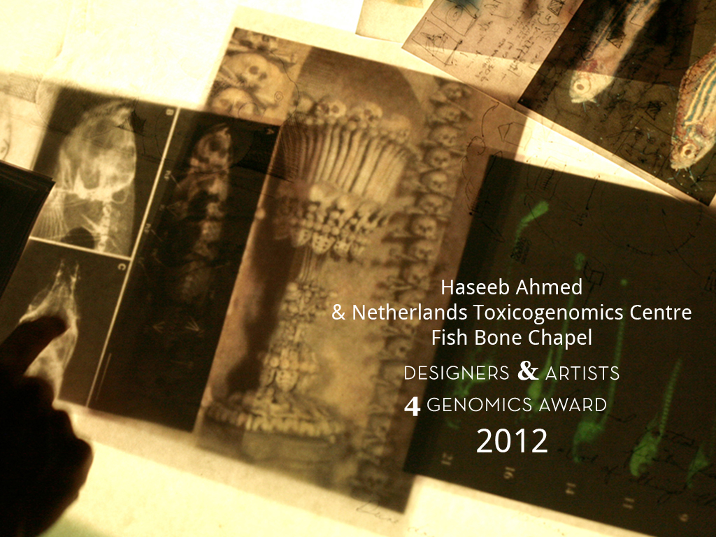 Fish Bone Chapel DA4GA 2012