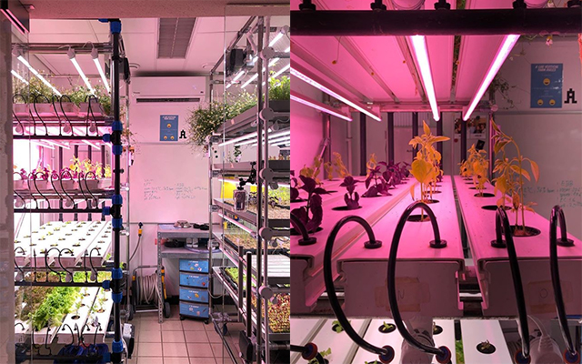 Onefarm's vertical farming showroom at A Lab