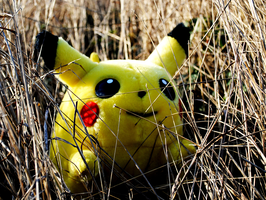 Pokemon Yellow: Pikachu appears