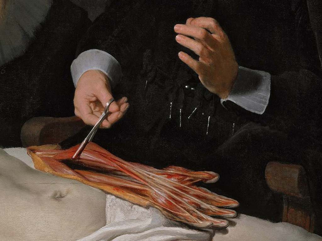 The anatomy lesson: dissecting medical futures | Waag