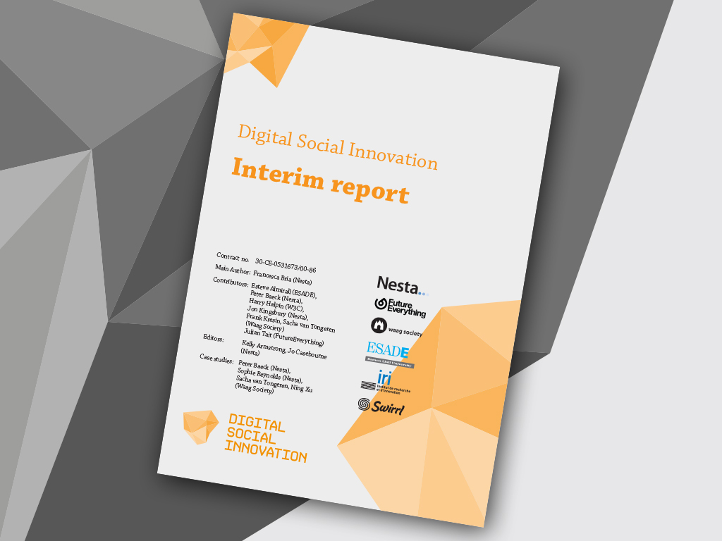 DSI interim report cover